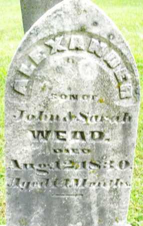 WEAD, ALEXANDER - Montgomery County, Ohio | ALEXANDER WEAD - Ohio Gravestone Photos