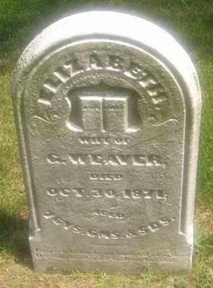 WEAVER, ELIZABETH - Montgomery County, Ohio | ELIZABETH WEAVER - Ohio Gravestone Photos