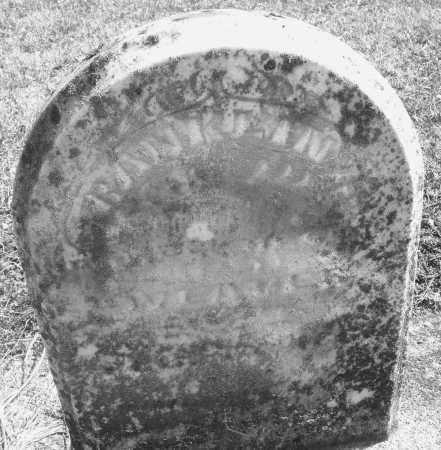 WEAVER, FRANKLIN H. - Montgomery County, Ohio | FRANKLIN H. WEAVER - Ohio Gravestone Photos