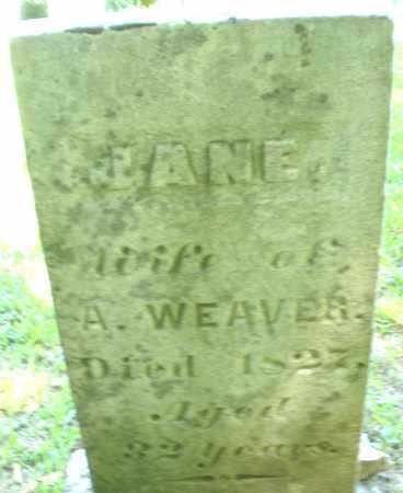 WEAVER, JANE - Montgomery County, Ohio | JANE WEAVER - Ohio Gravestone Photos