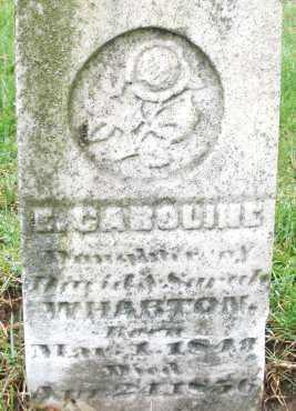 WHARTON, E. CAROLINE - Montgomery County, Ohio | E. CAROLINE WHARTON - Ohio Gravestone Photos