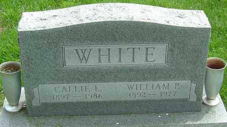 WHITE, CALLIE - Montgomery County, Ohio | CALLIE WHITE - Ohio Gravestone Photos