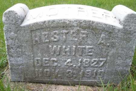 WHITE, HESTER A. - Montgomery County, Ohio | HESTER A. WHITE - Ohio Gravestone Photos