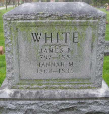 WHITE, JAMES B. - Montgomery County, Ohio | JAMES B. WHITE - Ohio Gravestone Photos