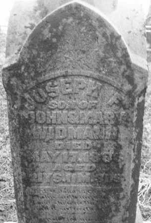 WIDMANN, JOSEPH F. - Montgomery County, Ohio | JOSEPH F. WIDMANN - Ohio Gravestone Photos