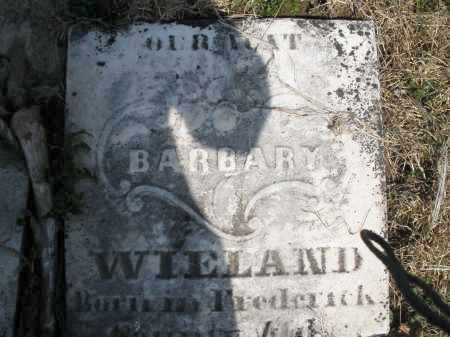 WIELAND, BARBARY - Montgomery County, Ohio | BARBARY WIELAND - Ohio Gravestone Photos