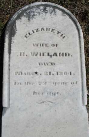 WIELAND, ELIZABETH - Montgomery County, Ohio | ELIZABETH WIELAND - Ohio Gravestone Photos
