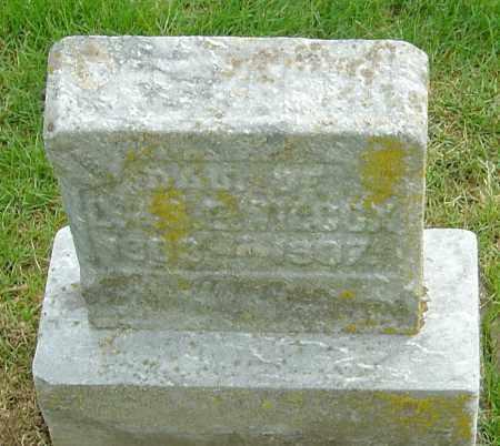 WILCOX, ELIZABETH - Montgomery County, Ohio | ELIZABETH WILCOX - Ohio Gravestone Photos