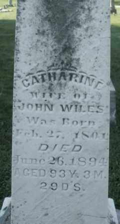WILES, CATHARINE - Montgomery County, Ohio | CATHARINE WILES - Ohio Gravestone Photos