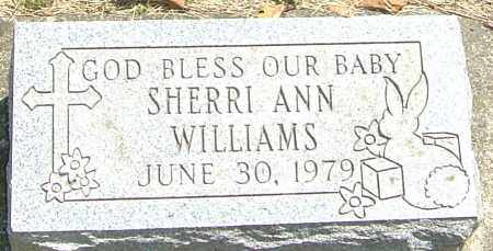 WILLIAMS, SHERRI ANN - Montgomery County, Ohio | SHERRI ANN WILLIAMS - Ohio Gravestone Photos