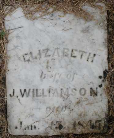 WILLIAMSON, ELIZABETH - Montgomery County, Ohio | ELIZABETH WILLIAMSON - Ohio Gravestone Photos