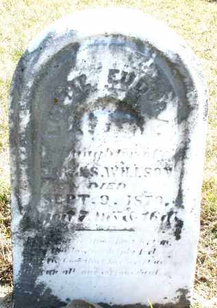 WILLSON, LOTTIE E. - Montgomery County, Ohio | LOTTIE E. WILLSON - Ohio Gravestone Photos