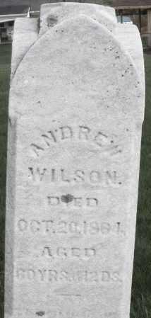 WILSON, ANDREW - Montgomery County, Ohio | ANDREW WILSON - Ohio Gravestone Photos