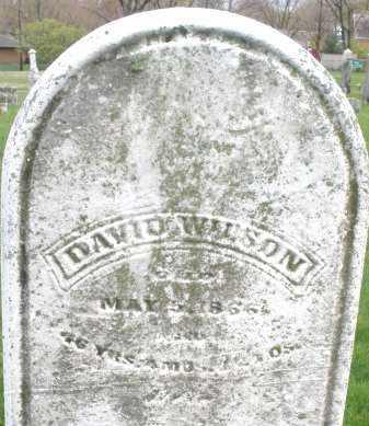 WILSON, DAVID - Montgomery County, Ohio | DAVID WILSON - Ohio Gravestone Photos