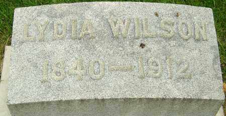 WILSON, LYDIA - Montgomery County, Ohio | LYDIA WILSON - Ohio Gravestone Photos