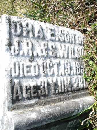WILSON, ORA E. - Montgomery County, Ohio | ORA E. WILSON - Ohio Gravestone Photos