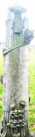 WILSON, REV. J.H. - Montgomery County, Ohio | REV. J.H. WILSON - Ohio Gravestone Photos
