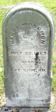 WOGOMON, HENRY - Montgomery County, Ohio | HENRY WOGOMON - Ohio Gravestone Photos