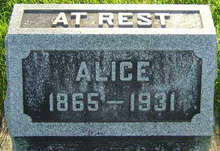 TERRY WYSONG, ALICE - Montgomery County, Ohio | ALICE TERRY WYSONG - Ohio Gravestone Photos