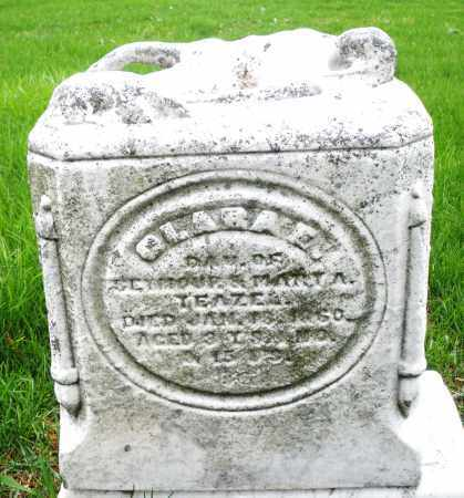 YEAZEL, CLARA E. - Montgomery County, Ohio | CLARA E. YEAZEL - Ohio Gravestone Photos