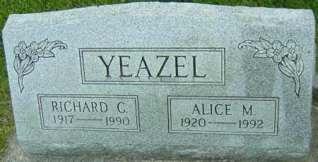 YEAZEL, ALICE M - Montgomery County, Ohio | ALICE M YEAZEL - Ohio Gravestone Photos