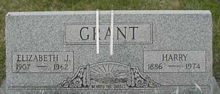 GRANT, ELIZABETH J. - Morgan County, Ohio | ELIZABETH J. GRANT - Ohio Gravestone Photos