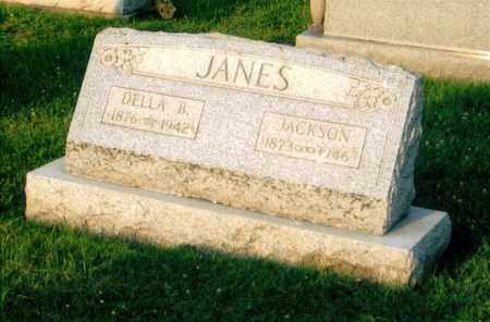 JANES, ANDREW JACKSON - Morgan County, Ohio | ANDREW JACKSON JANES - Ohio Gravestone Photos