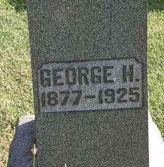 ANDREW, GEORGE H. - Morrow County, Ohio | GEORGE H. ANDREW - Ohio Gravestone Photos