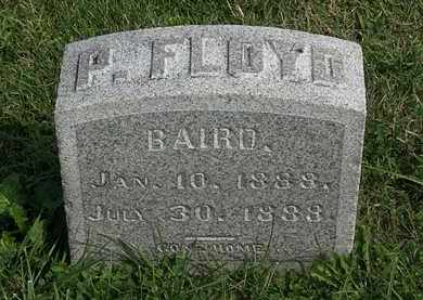 BAIRD, P. FLOYD - Morrow County, Ohio | P. FLOYD BAIRD - Ohio Gravestone Photos