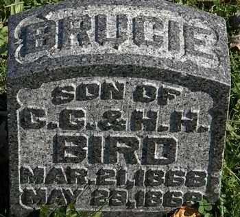 BIRD, BRUCIE - Morrow County, Ohio | BRUCIE BIRD - Ohio Gravestone Photos