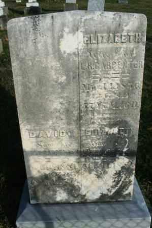 CARPENTER, ELIZABETH (WIFE) - Morrow County, Ohio | ELIZABETH (WIFE) CARPENTER - Ohio Gravestone Photos
