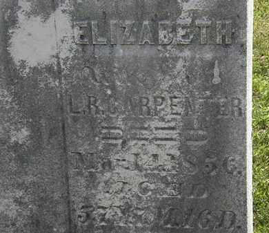 CARPENTER, ELIZABETH - Morrow County, Ohio | ELIZABETH CARPENTER - Ohio Gravestone Photos