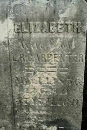 CARPENTER, ELIZABETH (WIFE) - Morrow County, Ohio | ELIZABETH (WIFE) CARPENTER - Ohio Gravestone Photos