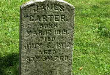 CARTER, JAMES - Morrow County, Ohio | JAMES CARTER - Ohio Gravestone Photos