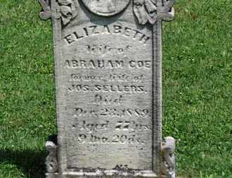 COE, ELIZABETH - Morrow County, Ohio | ELIZABETH COE - Ohio Gravestone Photos