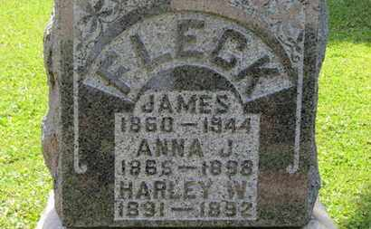 FLECK, JAMES - Morrow County, Ohio | JAMES FLECK - Ohio Gravestone Photos