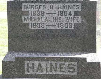 HAINES, MAHALA - Morrow County, Ohio | MAHALA HAINES - Ohio Gravestone Photos
