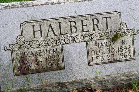 HALBERT, HARRY R. - Morrow County, Ohio | HARRY R. HALBERT - Ohio Gravestone Photos
