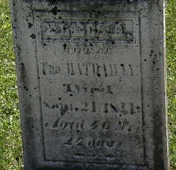 HATHAWAY, ELECTA - Morrow County, Ohio | ELECTA HATHAWAY - Ohio Gravestone Photos