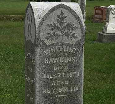 HAWKINS, WHITING - Morrow County, Ohio | WHITING HAWKINS - Ohio Gravestone Photos