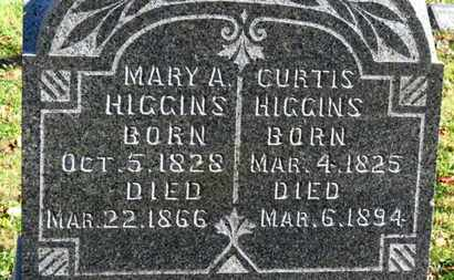 HIGGINS, CURTIS - Morrow County, Ohio | CURTIS HIGGINS - Ohio Gravestone Photos