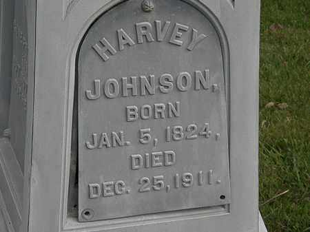 JOHNSON, HARVEY - Morrow County, Ohio | HARVEY JOHNSON - Ohio Gravestone Photos