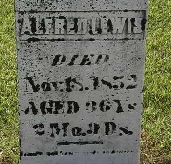 LEWIS, ALFRED - Morrow County, Ohio | ALFRED LEWIS - Ohio Gravestone Photos