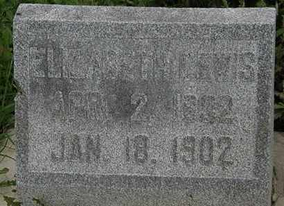 LEWIS, ELIZABETH - Morrow County, Ohio | ELIZABETH LEWIS - Ohio Gravestone Photos