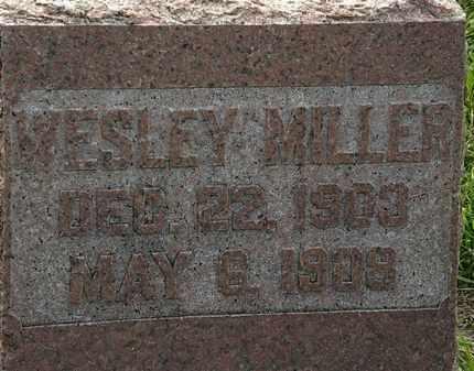 MILLER, WESLEY - Morrow County, Ohio | WESLEY MILLER - Ohio Gravestone Photos