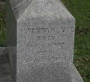 NOE, ALBERTS - Morrow County, Ohio | ALBERTS NOE - Ohio Gravestone Photos