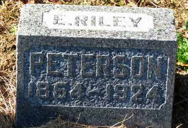 PETERSON, E. RILEY - Morrow County, Ohio | E. RILEY PETERSON - Ohio Gravestone Photos