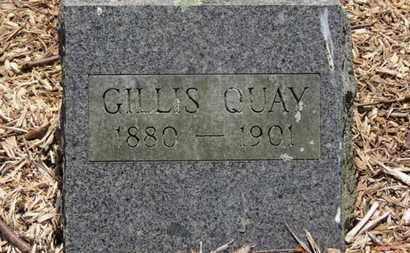 QUAY, GILLIS - Morrow County, Ohio | GILLIS QUAY - Ohio Gravestone Photos