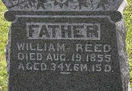 REED, WILLIAM - Morrow County, Ohio | WILLIAM REED - Ohio Gravestone Photos