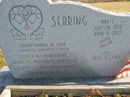 SEBRING, MAX E - Morrow County, Ohio | MAX E SEBRING - Ohio Gravestone Photos